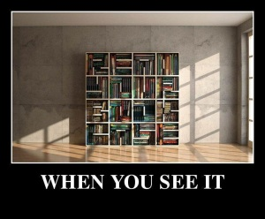 When-you-see-it-Bookcase